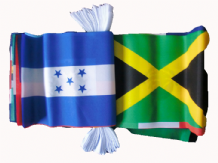 CARIBBEAN MULTI NATION BUNTING - 9 METRES 30 FLAGS